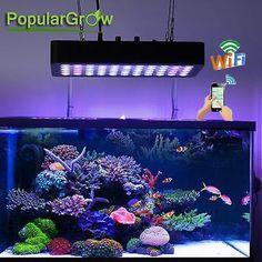 23 best aquarium lighting images in 2019 aquarium lighting