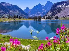 Jenny Lake in Wyoming spring flowers rocky mountains Grand Teton National Park Hd Wallpapers Amazing Places On Earth, Beautiful Places, Beautiful Pictures, Grand Teton National Park, National Parks, Mosaic Pictures, Nature Hd, Lake Mountain, Mountain Landscape