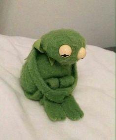 ✔ Memes Love Wallpaper Kermit The Frog Funny Profile Pictures, Funny Reaction Pictures, Funny Pictures, Animal Jokes, Funny Animals, Cute Animals, New Memes, Funny Memes, Memes Humor