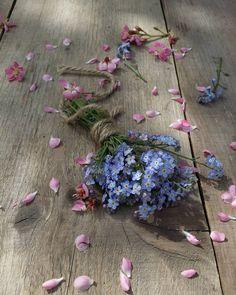 Good evening friends. Spring clean in the garden: Getting rid of pretty weeds 🌸🌸🌸🌼🌼🌼 #auckland #newzealand #click_vision #stilllife #still_life_gallery #vscofeature #vscoflowers #vscomood #ig_mood #splashmood #igglobalwomenclub #morningslikethese #flowersofinstagram #love_flowers #love_natura #tv_flowers #tv_stilllife #tv_living #vzcomade #fogetmenot #flowerstagram #instaflower #colors_of_day #bd_mobile #natureflatlays #flatlayoftheday #jr_lovemobile #jj_still_life