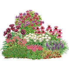 hohe stauden als sichtschutz garden to grow pinterest flower front yards and yards. Black Bedroom Furniture Sets. Home Design Ideas