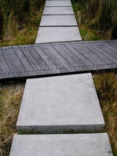 Simple and effective use of hardwood timber and in-situ concrete for intersecting formal/informal paths. Wetland garden, Waitangi Park, Wellington.Wraight Associates Landscape Architecture. Photo: hinter/DM