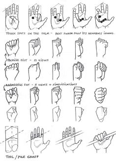 hand ✤ || CHARACTER DESIGN REFERENCES | Find more at https://www.facebook.com/CharacterDesignReferences if you're looking for: #line #art #character #design #model #sheet #illustration #expressions #best #concept #animation #drawing #archive #library #reference #anatomy #traditional #draw #development #artist #pose #settei #gestures #how #to #tutorial #conceptart #modelsheet #cartoon #hand
