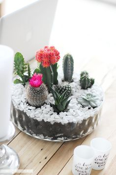 A DIY Tabletop Cactus & Succulent Garden is not as hard to do, as you might think. In this easy step by step tutorial I am showing you how to do it.