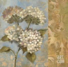 Hydrangea on Soft Blue Art Print by Silvia Vassileva at Art.com