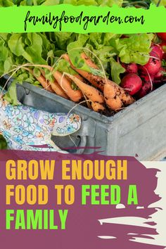 If you want to grow enough food to feed your family, Family Food & Garden gives the guidance to make this a reality. Can you and your family live off the land? Determine how much you land you need to feed your family. Will eating produce that you grow save you money? Learn how many plants per person you will need for your crops. This will be based on diet, growing zone and climate, space, time, storage and more. Download the report here… #growfoodforfamily #feedyourfamily… Family Family, Family Meals, Healthy Fruits And Vegetables, Family Garden, Space Time, Garden Planning, Real Food Recipes, Natural Remedies, Homesteading