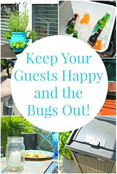 Taking a few extra steps to keep bugs away from your backyard barbecue will keep your guests happy and make your BBQ a success!