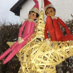 Sternenreiter  Ich habe dieses Jahr bisher echt wenig Deko das Küchenfenster noch gar nicht dekoriert  Auch im Blog hänge ich hinterher das liegt wohl an Leben 1.0  Habt einen schönen 1. Advent  #elfontheshelf #ivotheelf #weihnachtsdeko #weihnachtstradition Elf On The Shelf, 1 Advent, Shelves, Holiday Decor, Blog, Instagram, Home Decor, Horseback Riding, Stars