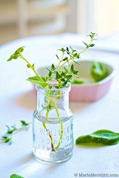 Fresh Herbs make food taste great! FamilyFreshCooking.com © MarlaMeridith.com