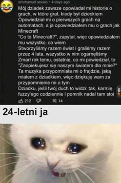 Minecraft T, Polish Memes, Best Memes Ever, Tell My Story, Nyan Cat, True Memes, News Games, Arcade Games, Life Lessons