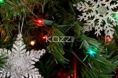 christmas lights - Close shot of Christmas light in a tree.