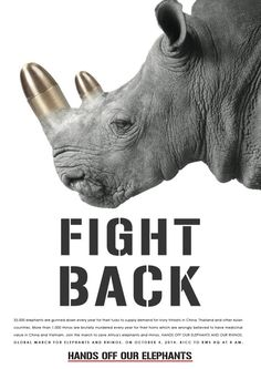 hands off our elephants fight back rhino 33000 elephants are gunned down every year for
