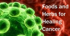 8 Most Effective Foods and Herbs for Naturally Healing Cancer