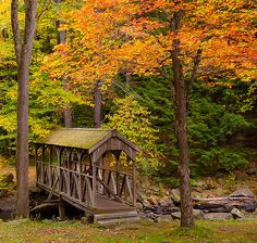A small covered bridge in Willard Brook State Forest in Massachusetts. Photo by Gordon Mould http://www.flickr.com/photos/gpics07/4046814761/#