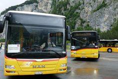 Ein MAN und Solaris traffen sich am in Rynächt Post Bus, Busse, Swiss Guard, Pictures