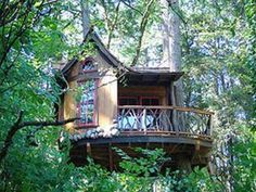 Treehouse Masters TV Show on Animal Planet.  Pete Nelson is a treehouse genius!!