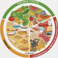 Blog de los niños: Tipos de alimentos