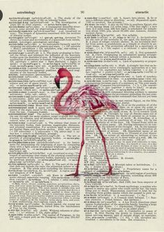 Flamingo on Vintage Book Page