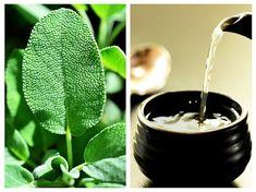 Ceaiul de SALVIE – un ajutor neprețuit pentru sănătatea FEMEILOR   LaTAIFAS Natural Treatments, Natural Remedies, Plant Leaves, Health, Nature, Quotes, Medicine, Plant, Quotations