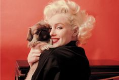 Marilyn Timeline See All
