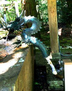 dragon plumbing