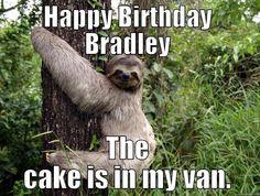 creepy sloth memes - Google Search
