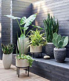 4 Grand Cool Ideas: Diy Backyard Garden Planters backyard garden trees how to grow.Backyard Garden Shed Storage backyard garden design thoughts. Rock Planters, Tall Planters, Cement Planters, Cement Patio, Modern Planters, Garden Planters, Porch Planter, Ikea Planters, Cement House