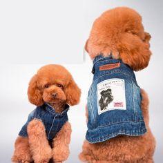 Blue Jean Summer Denim Dog Clothes