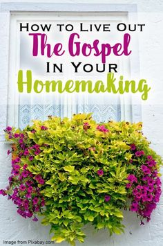 How to Live out the Gospel in Your Homemaking
