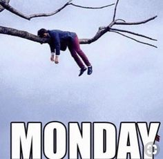 Needs all the coffee Hump Day Humor, Weekend Humor, Monday Humor, Monday Quotes, Its Friday Quotes, Funny Monday, Funny Drunk Texts, Most Hilarious Memes, Funny Memes