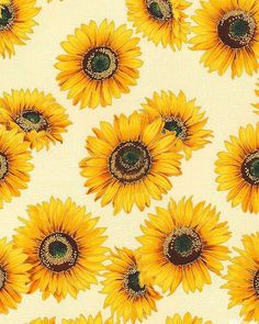 Shades of the season 8 - sunflower shimmer - ivory/gold aes Cute Backgrounds, Aesthetic Backgrounds, Phone Backgrounds, Cute Wallpapers, Aesthetic Wallpapers, Iphone Wallpaper, Sunflowers Background, Image Deco, Sunflower Wallpaper