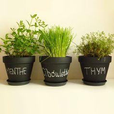 Pots en ardoise pour plantes aromatiques
