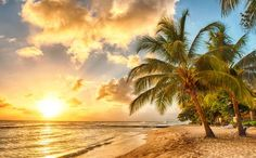 An insider's guide to Barbados, featuring the island's best hotels, restaurants, bars, shops, attractions and things to do, including how to travel there and around. By Fred Mawer, Telegraph Travel's Barbados expert. Click on the tabs below for the best places to stay, eat, drink and shop, including the best things to do and what to do on a short break.