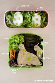 Dinosaur Bento...over the top but I appreciate the labels for how to