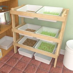 Build a fodder rack and sprout greens in no time for supplemental animal feed.data-pin-do=