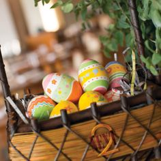 Don't miss the NEXT2 #Easter Eggstreme buffet brunch on 20 April 2014, which will provide loads of fun activities for children, such as an Easter egg hunt, egg painting and entertainment from a lovely bunny mascot and clown. #Bangkok