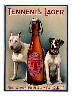 Vintage pitbull - Tennent's Lager Ad