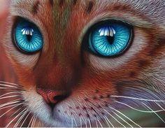 A Bengal Cat Drawing by Jeroen van Neijhof