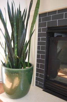 Large plant beside fireplace in summer?  www.thenester.com