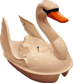Swan Pedal Boat - NEED IT!!!