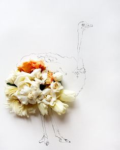 ostrich and Flower Photograph No.6237 by kariherer on Etsy