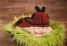 Ladybug!!!  <3