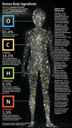 We are stardust. Literally....The average human has approximately 100 trillion cells and each cell is made of approximately 100 trillion atoms, each of which were originally created in the center of a star.