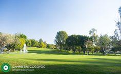 De acuerdo con David Leadbetter hay tres áreas con las que batallan los golfistas principiantes:Sostener correctamente el bastón,aprender cómo deben inclinarse y a partir de ese momento, todo se trata de los brazos se deben asegurar de que sus brazos y pecho se mantengan juntos a lo largo del swing