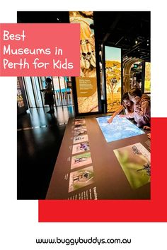 Museums in Perth – they're fascinating places to discover and explore! An indoor museum is also a brilliant place to visit on a very hot or rainy day. Whatever your child's interest – motors, maritime, history, science or animals – they're bound to find a place to capture their imagination in the Buggybuddys guide to museums in Perth. Perth, Museums, Motors, Imagination, Places To Visit, Indoor, Child, Science, Explore