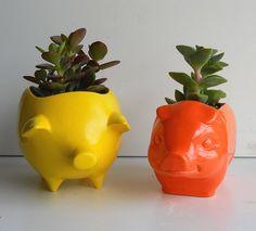 Piggy plant pots!!!!