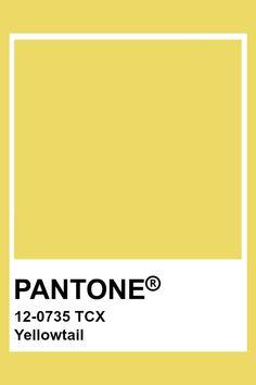 PANTONE 12-0735 TCX Yellowtail #pantone #color #yellow Pantone Color Chart, Pantone Colour Palettes, Paint Swatches, Color Swatches, Pantone Tcx, Yellow Pantone, Color Balance, Colour Board, Color Pallets