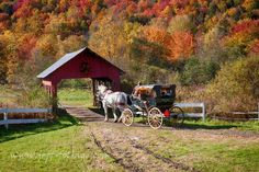 @Foliage_Reports: Stowe Vermont on Columbus day 2015 Glorious! @gostowe is a great visual treat! #Vistaphotography http://twitter.com/Foliage_Reports/status/654002715543109632/photo/1 www.jeff-foliage.com