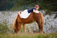 #Islandpferde #Pferde