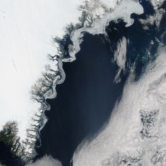 Swirling Sea Ice in the Greenland Sea